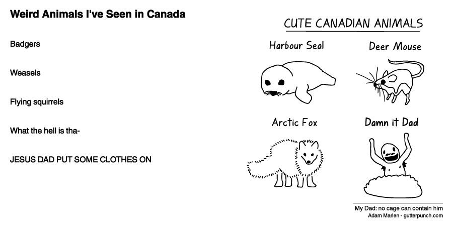 Weird Animals I've Seen in Canada