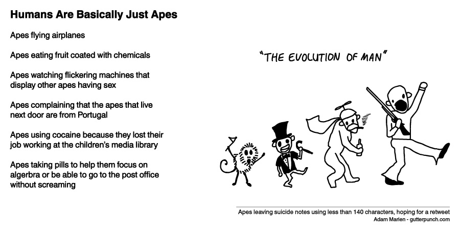 Humans Are Basically Just Apes